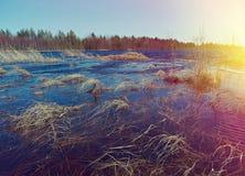 передние части ландшафта весной Стоковое Изображение