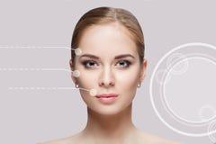 Передний портрет красивой молодой женщины с зелеными глазами на сером крупном плане предпосылки очистьте кожу девушки стоковая фотография rf