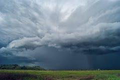 Перед штормом Съемка живой природы Стоковые Фотографии RF