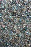 перла мати Стоковое Изображение RF