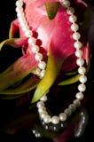 перла ожерелья плодоовощ дракона стоковые изображения