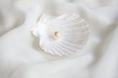 Перла стоковое фото rf
