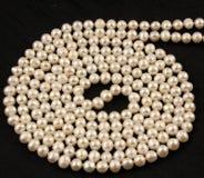 перлы круга Стоковые Изображения