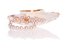 перлы ожерелья Стоковые Изображения RF