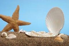 перлы океана Стоковые Изображения RF