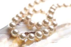 перлы предпосылки abalone Стоковые Фото