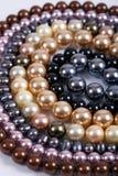 перлы Стоковая Фотография