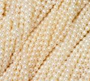 перлы стоковая фотография rf