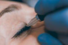Перманентность составляет Cosmetologist прикладывая постоянный состав на ey стоковая фотография