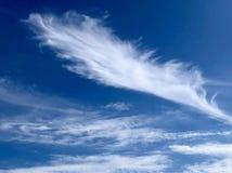 Перо в небе стоковые фото