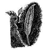 Перо нарисованной руки doodle птицы Стоковые Фотографии RF