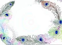 Перо павлина иллюстрация штока