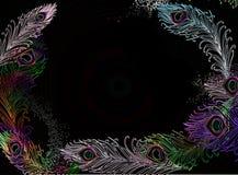 Перо павлина иллюстрация вектора