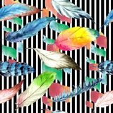 Перо птицы акварели от крыла Безшовная картина предпосылки Текстура печати обоев ткани Стоковые Фотографии RF