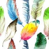 Перо птицы акварели от крыла Безшовная картина предпосылки Текстура печати обоев ткани Стоковая Фотография