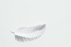 Перо птицы сделанной из белой бумаги на белой предпосылке Стоковая Фотография RF
