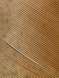 перо птицы 02 стоковое изображение
