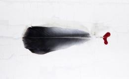 перо сиротливое Стоковая Фотография RF