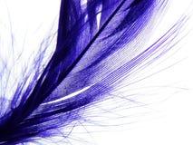 перо Стоковые Изображения RF