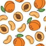 Персики и рука абрикосов рисуют картину вектора безшовную Стоковое Изображение