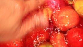 Персики мытья в воде видеоматериал