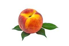 Персики одно с Стоковые Изображения RF