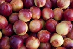 Персики Стоковое Фото