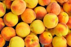 Персики Стоковая Фотография