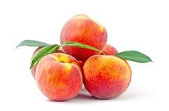 Персики 5 Стоковое Фото