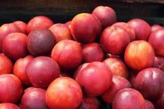 Персики Стоковые Фотографии RF