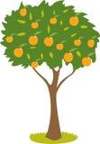 Персиковое дерево бесплатная иллюстрация