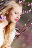 персик девушки сада Стоковые Фото