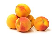 Персик золота стоковые фотографии rf