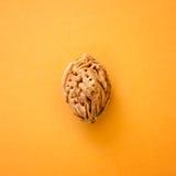 Персик косточки на желтой предпосылке Стоковое Изображение