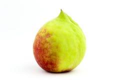 Персик цыпленока стоковая фотография rf