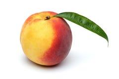 Персик Стоковое Фото