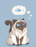 Персидская мечта кота colorpoint о рыбах иллюстрация штока