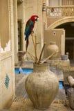 Персидский сад Стоковое фото RF