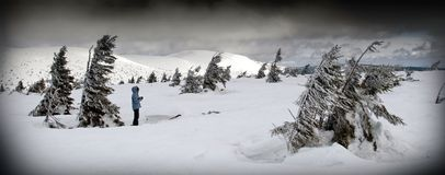 Персона в ветреном ландшафте зимы Стоковое Фото