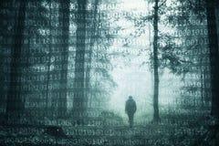 Персона в лесе с предпосылкой двоичных чисел Стоковое Изображение RF