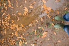 Персона нося пару традиционных зеленых резиновых ботинок Веллингтона в осени леса ненастной с листьями на том основании Стоковая Фотография