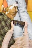 Персона принимая фото ее собаки Стоковая Фотография