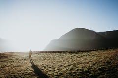 Персона смотря заход солнца Стоковое Фото