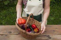 Персона с продуктом сада Стоковое Фото
