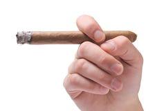 персона удерживания сигары стоковое изображение rf