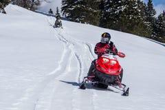 Персона управляя снегоходом Стоковое Изображение