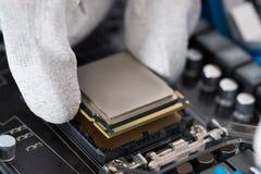Персона устанавливая центральный процессор в материнскую плату стоковая фотография rf
