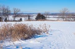 Перспектива долины на парке озера весн Стоковые Изображения