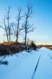 Перспектива зимы Стоковые Фото
