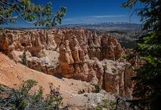 Перспектива каньона Bryce Стоковое Изображение